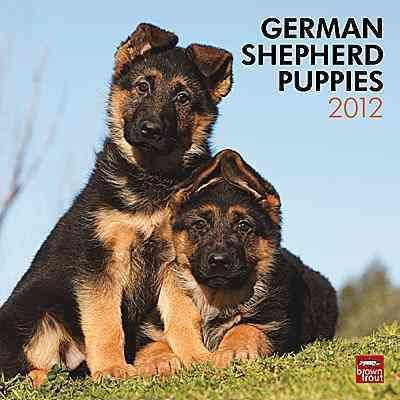 German Shepherd Puppies 2012 Wall Calendar