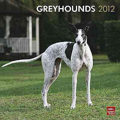 Greyhounds 2012 Wall Calendar