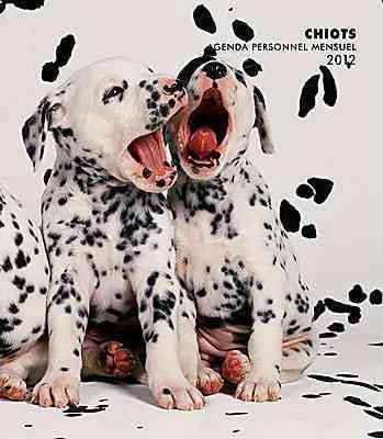 Chiots 2012 Personal Planner