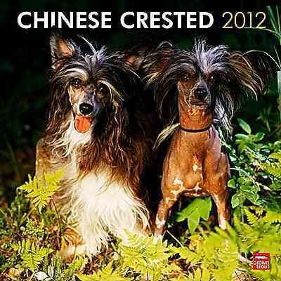 Chinese Crested 2012 Calendar