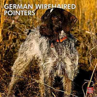German Wirehaired Pointers 2012 Wall Calendar