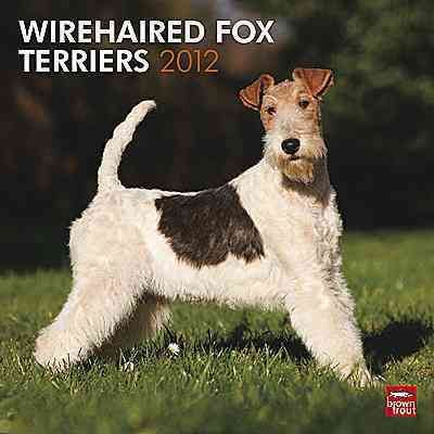 Wirehaired Fox Terriers 2012 Calendar