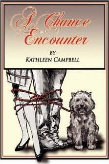 A Chance Encounter Cover Image