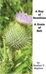A Ray of Sunshine...a Grain of Salt Cover Image