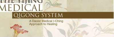 The Yijing Medical Qigong System : Suzanne Friedman
