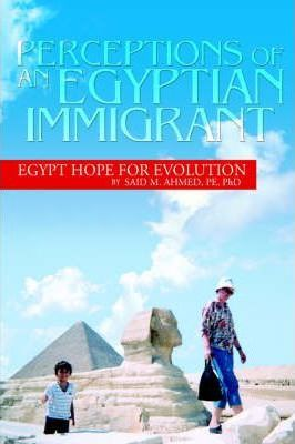 Perceptions of an Egyptian Immigrant