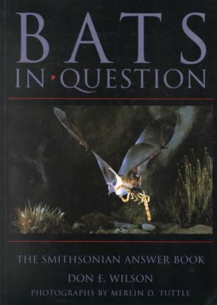 Bats in Question