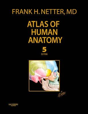 Atlas Of Human Anatomy Frank H Netter 9781437709704