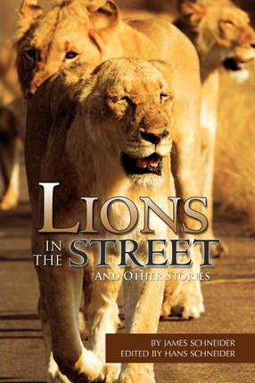 Lions in the Street Cover Image