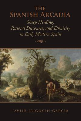 Objects of Culture in the Literature of Imperial Spain (Toronto Iberic)