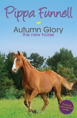 Tilly's Pony Tails: Autumn Glory the New Horse