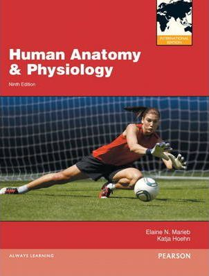 Human Anatomy & Physiology:International Edition/Interactive Physiology 10-System Suite CD-ROM (component)/Brief Atlas of the Human Body, A (ValuePack Only)