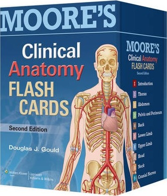 Moore\'s Clinical Anatomy Flash Cards : Douglas J. Gould : 9781451173352