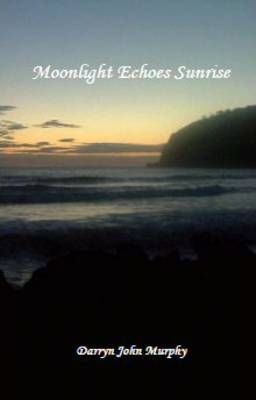 Moonlight Echoes Sunrise