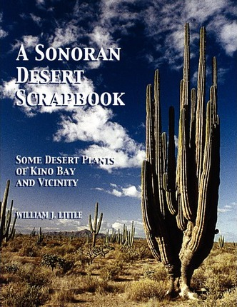 A Sonoran Desert Scrapbook: Some Desert Plants of Kino Bay and Vicinity