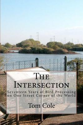 The Intersection  Seventeen Years of Bird Processing on One Street Corner of the World
