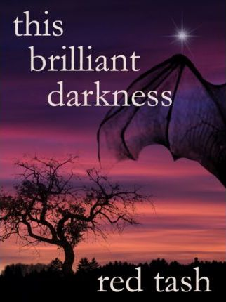 This Brilliant Darkness Cover Image