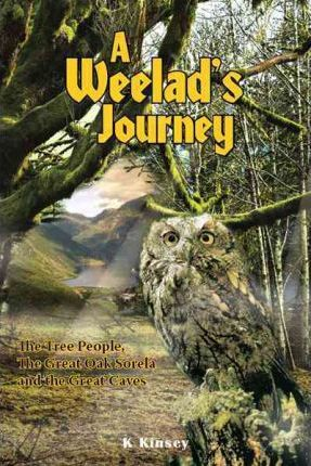 A Weelad's Journey Cover Image
