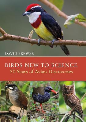 Birds New to Science  Fifty Years of Avian Discoveries