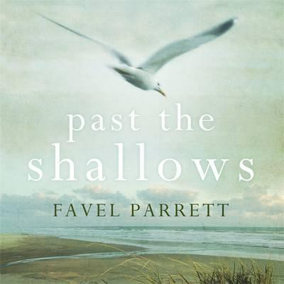 Past the Shallows