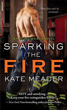 Sparking the Fire Cover Image