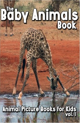 The Baby Animals Book