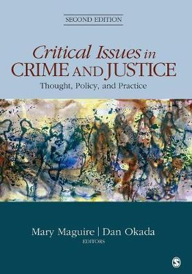 critical issues in the american criminal Dr craig gruber talks about the latest challenges in criminal justice  what are  the challenges keeping us up at night here are five:.