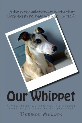 Our Whippet