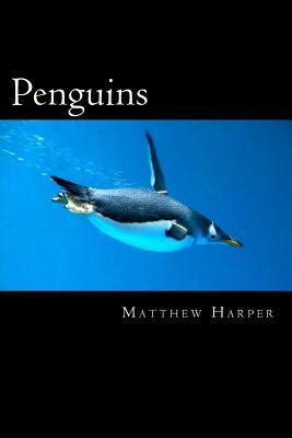 Penguins  A Fascinating Book Containing Penguin Facts, Trivia, Images & Memory Recall Quiz Suitable for Adults & Children