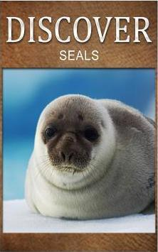 Seals - Discover  Early Reader's Wildlife Photography Book