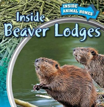Inside a beaver lodge - photo#42