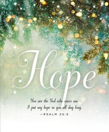 Hope Image Advent Bulletin, Large (Pkg of 50)