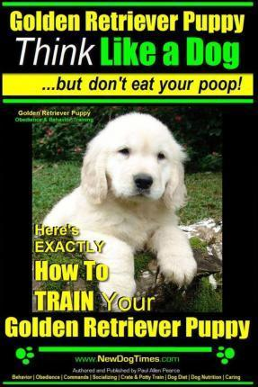 Golden Retriever Puppy Think Like A Dog But Dont Eat Your Poop