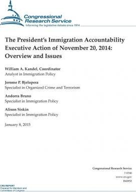The President's Immigration Accountability Executive Action of November 20, 2014
