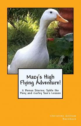 Mazy's High Flying Adventure!