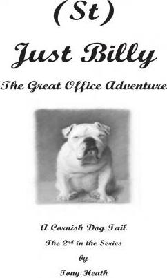 (St) Just Billy - The Great Office Adventure