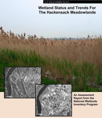 Wetland Status and Trends for the Hackensack Meadowlands