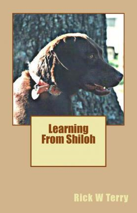Learning from Shiloh