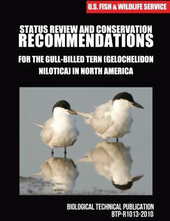Status Review and Conservation Recommendations for the Gull-Billed Tern (Gelochelidon Nilotica) in North America