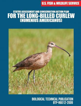 Status Assessment and Conservation Action Plan for the Long-Billed Curlew (Numenius Americanus)