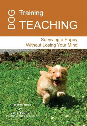 Dog Teaching