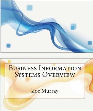 Business Information Systems Overview