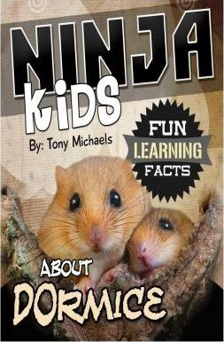 Fun Learning Facts about Dormice