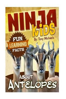 Fun Learning Facts about Antelopes