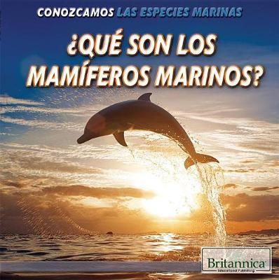 Que Son Los Mamiferos Marinos? (What Are Sea Mammals?)
