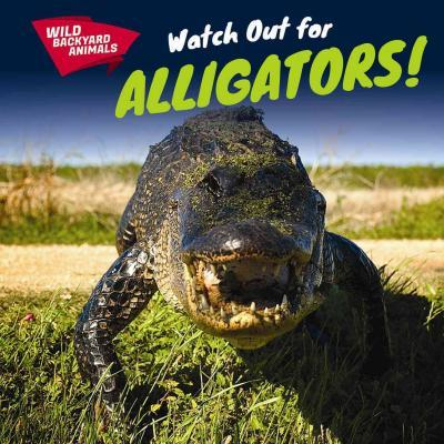 Watch Out for Alligators!