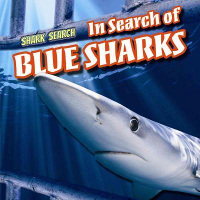 In Search of Blue Sharks