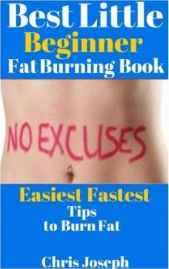 Best Little Beginner Fat Burning Book
