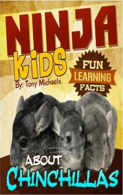 Fun Learning Facts about Chinchillas