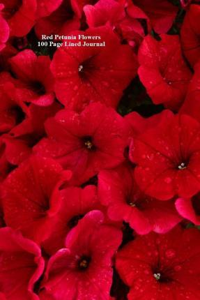 Red Petunia Flowers 100 Page Lined Journal